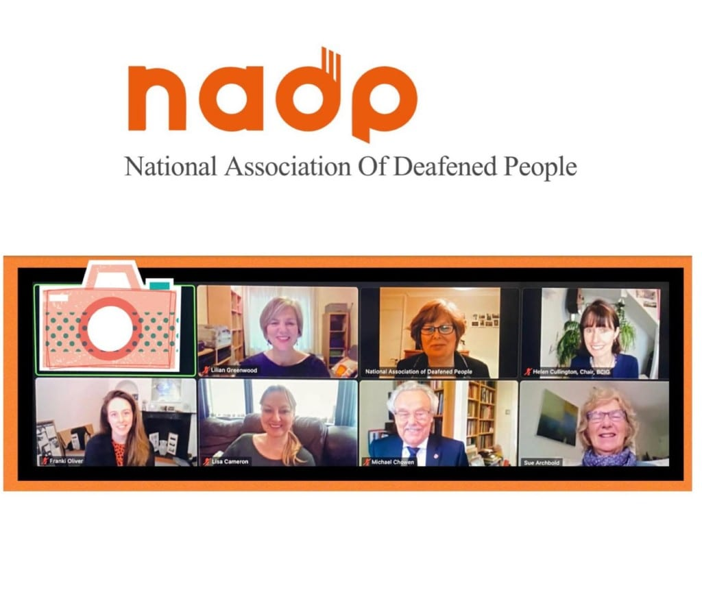 NAPD webinar attendees on a Zoom call